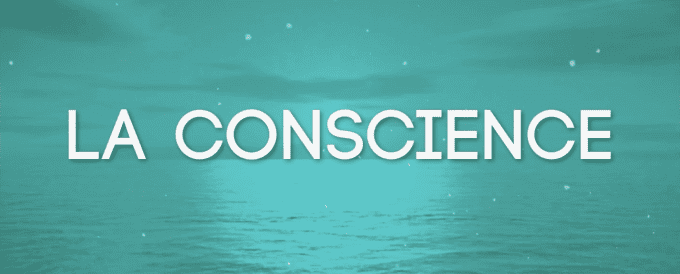 La conscience – Capsule vidéo